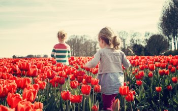 Wallpaper: Children playing in the land of Tulips