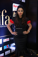 Meghana Gore looks super cute in Black Dress at IIFA Utsavam Awards press meet 27th March 2017 08.JPG