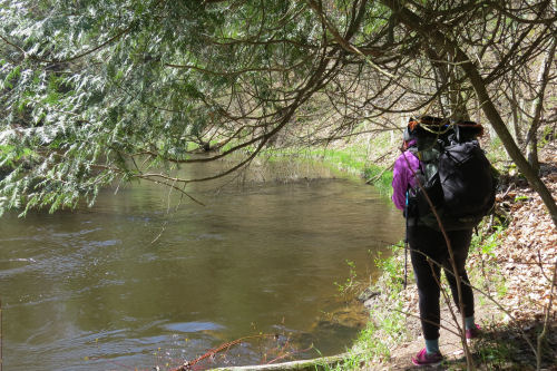 hiker standing by Pere Marquette River