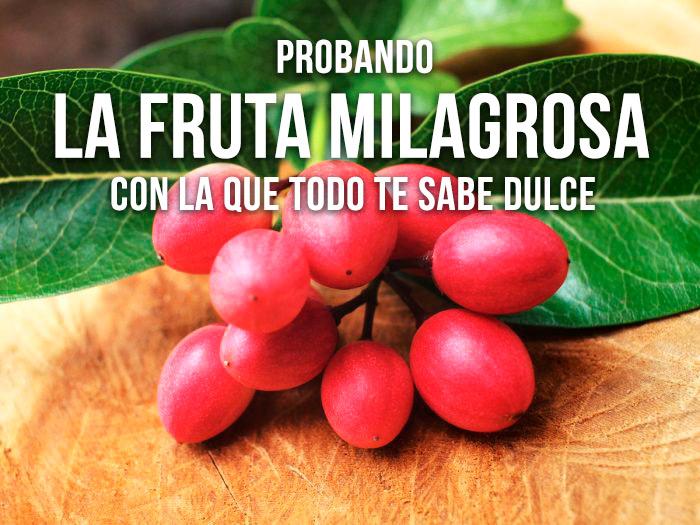 Probando la Fruta Milagrosa Ledidi