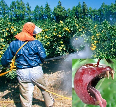Fruits & Vegetables with Pesticides