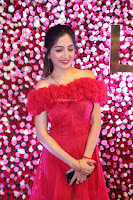 Poonam Kaur in lovely Transparent Red Gown at Zee Telugu Apsara Awards 2017 08.JPG