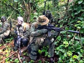 Grupamento de Mergulhadores de Combate (GRUMEC) / Combat Divers Group - Unit Pasukan Khusus Angkatan Laut Brazil