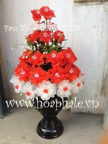 Hoa hong pha le