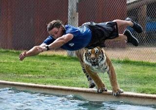 Tigre atacando a humano