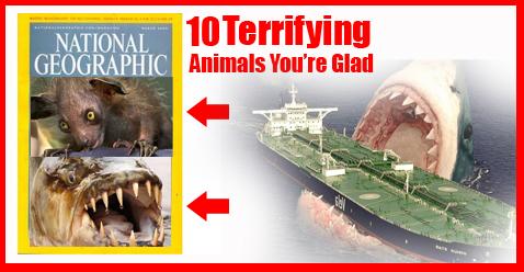 Terrifying Animals
