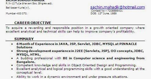 6 Month Experience Resume For Software Developer
