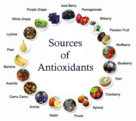 The importance of antioxidants in the diet