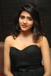 Shalu Chourasiya in spicy Sleeveless Strapless Black Top at O Pilla Nee Valla Movie Audio Launch Feb 2017 023.JPG