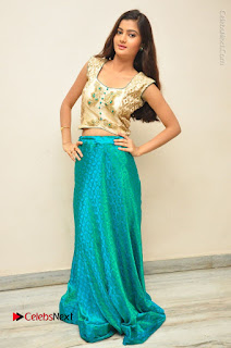 Telugu Actress Akshitha Stills at Prementha Panichese Narayana Movie Opening  0095.JPG