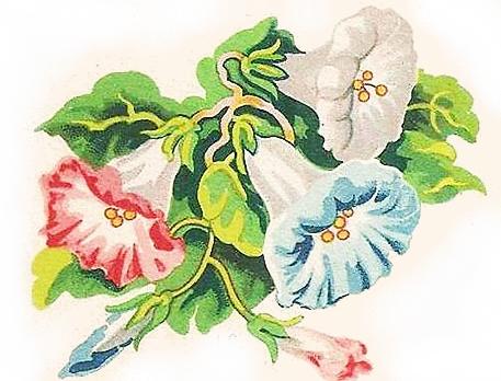 Image ancienne fleur vintage