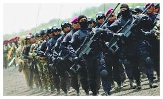 SEKILAS MENGENAL DENJAKA – DETASEMEN JALA MENGKARA TNI AL