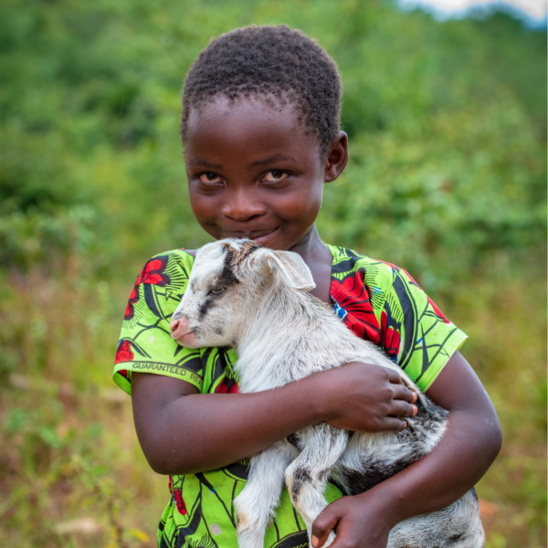 world vision child in africa holding a goat from the catalog