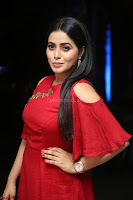 Poorna in Maroon Dress at Rakshasi movie Press meet Cute Pics ~  Exclusive 45.JPG