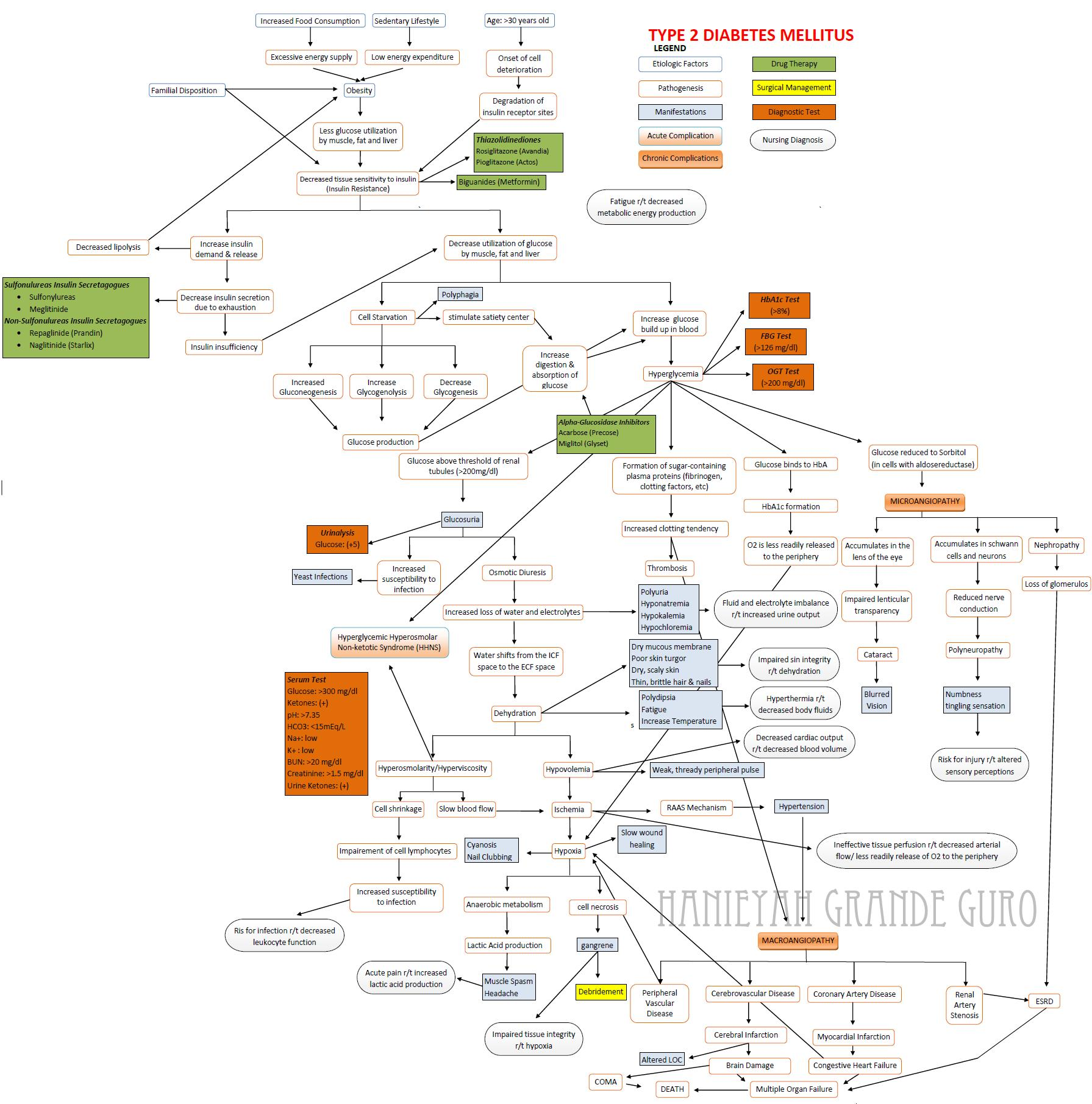 Renal Failure Concept Map.Case Study Diabetes Mellitus And Chronic Renal Failure