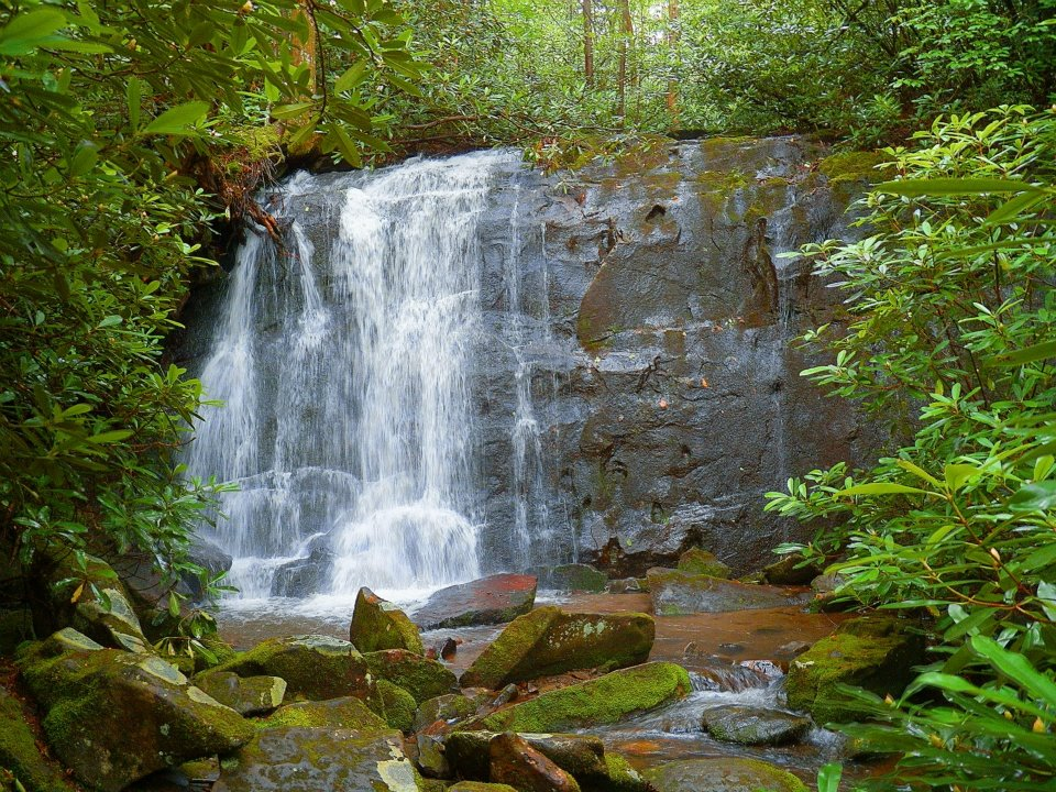 View of a small waterfall | Stock Photo |Small Cove Waterfall