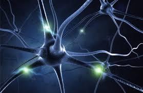 علاج آلام الأعصاب وضعفها بالأعشاب