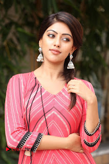 Actress Anu Emmanuel Pictures at Majnu Success Meet  0014.JPG