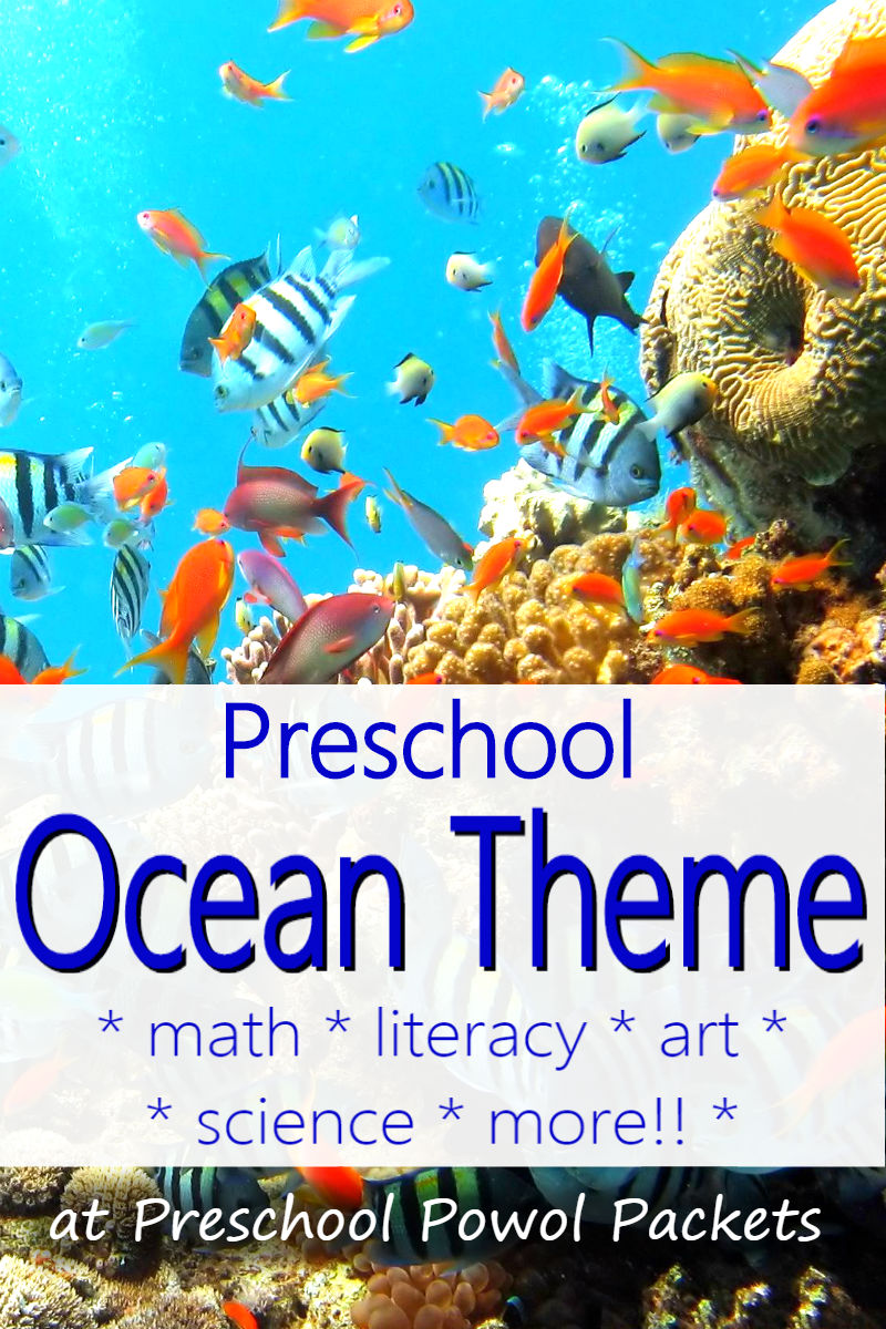 awesome preschool ocean theme with science experiments art projects