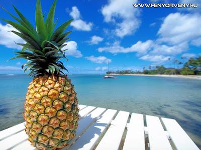 Gyógyítás gyümölcsökkel: Ananász (Ananas sativa)