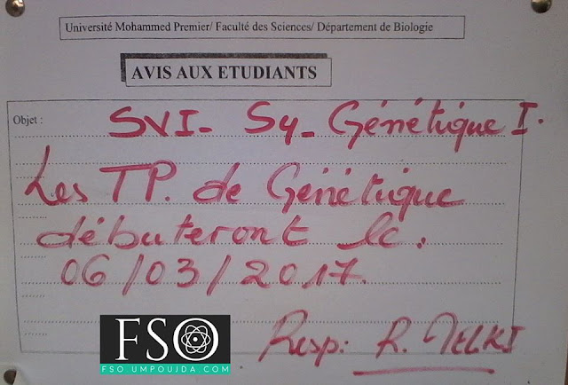 """SVI S4 : Avis de TP de """"Génétique I"""""""