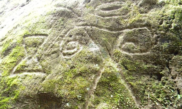 Hikers discover 1000 year old petroglyphs on Caribbean island