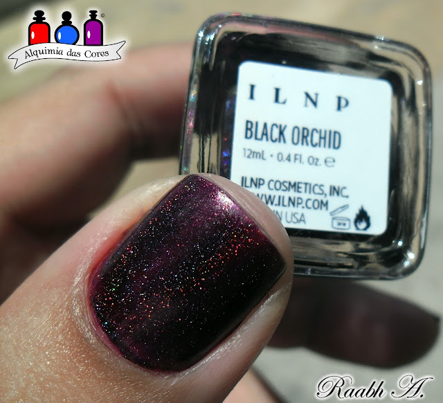 ILNP Fall Collection 2014, Holographic, Burgundy, Purple, Vinho, Roxo, Holográfico, Black Orchid, Raabh A.