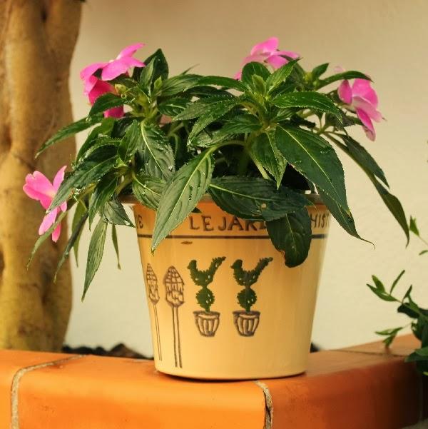 Detalles para decorar un patio o una terraza guia de jardin for Detalles para decorar jardines