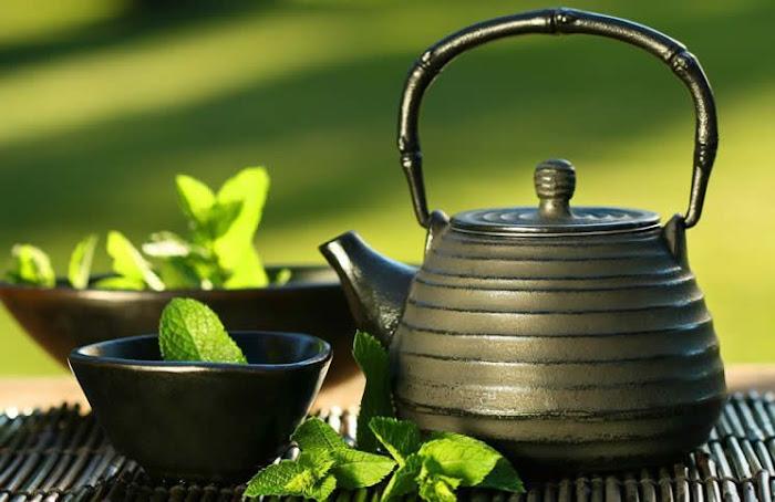 Encuentra los mejores tés naturales de calidad, sin aromas añadidos y con aceites esenciales