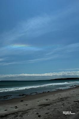 桂木の浜 ≪Katsuragi Beach≫