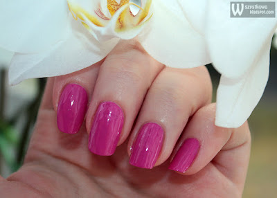 Bell Glam Wear Glossy Colour 804