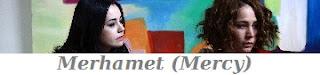 Ver Merhamet Mercy novela turca online hablado en español