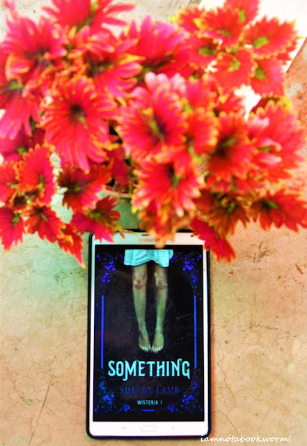 Something by Shelby Lamb | A Book Review by iamnotabookworm