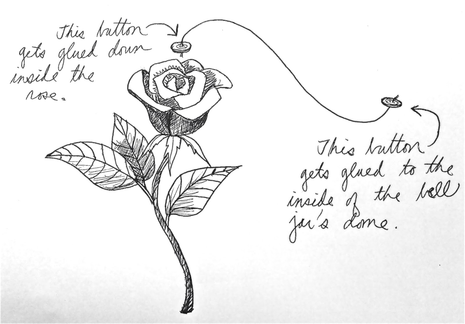 Enchanted Rose Drawing: The Domestic Fairy Tale Princess: The Enchanted Rose: A