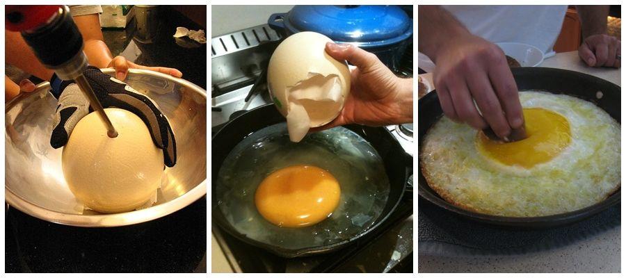 Proses memasak telur burung Unta (Joshsfood)