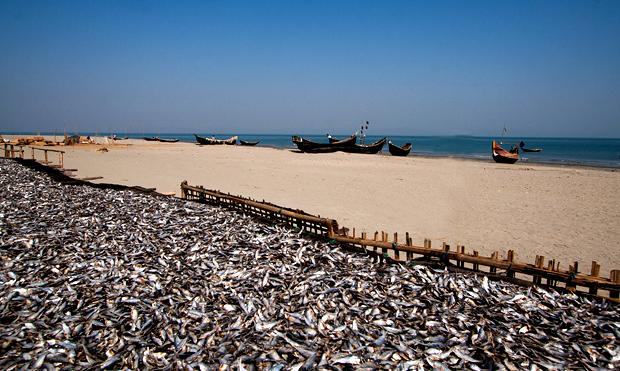 Saint Martin Island  of Bangladesh