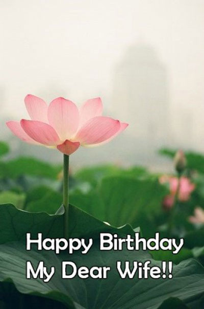 Beautiful Wife Birthday Wishes | Quotes | Messages and Images