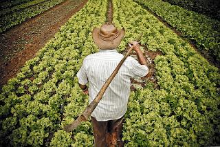 Relator diz que agricultores não precisam de sindicato para se aposentar