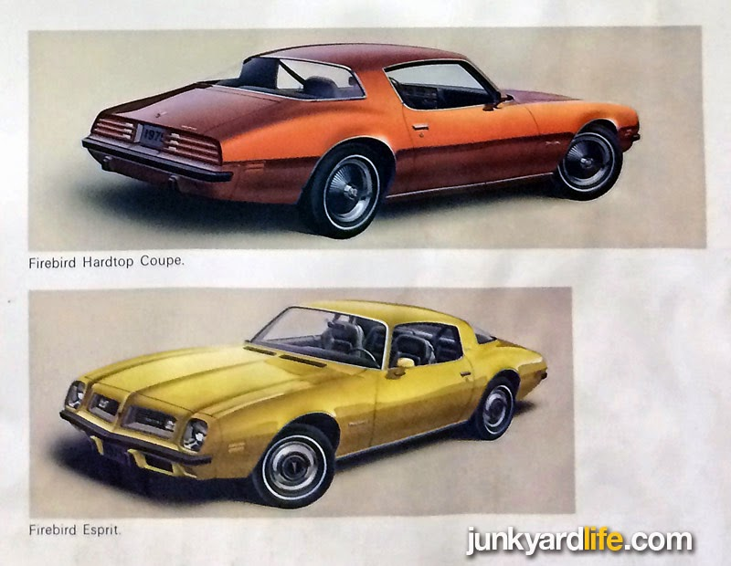 Examples of the two mystery colors that Pontiac did not offer but showed in their 1975 Pontiac lineup brochure.