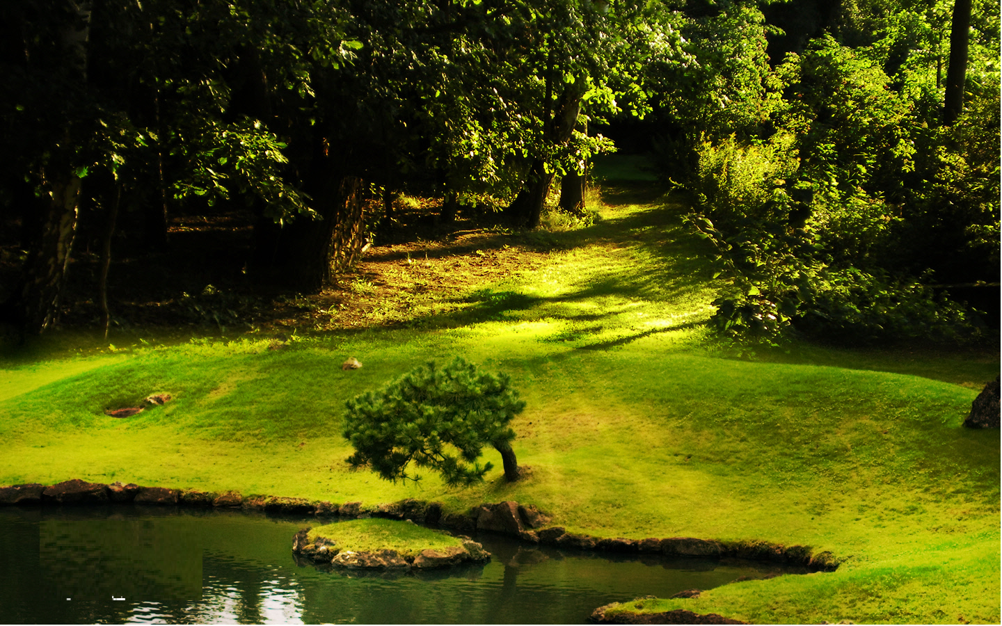 Natural wallpaper background free downloads: Free download Natural Wallpaper background Green ...