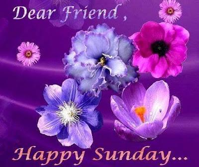 Happy Sunday Friends