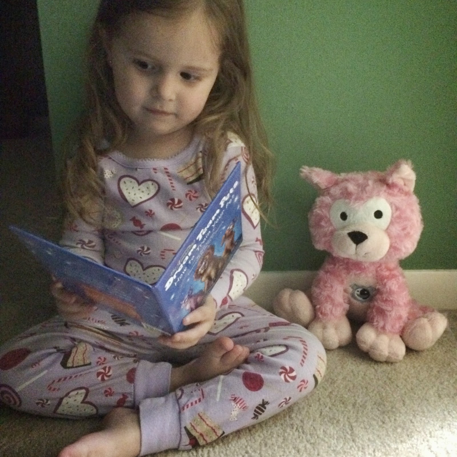 reading with Dream Team Pets