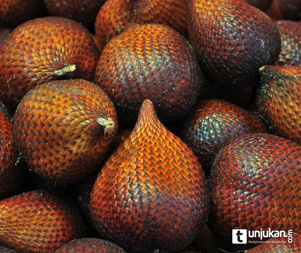 Inilah manfaat buah salak bagi kesehatan yang mungkin belum anda ketahui