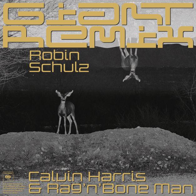 Calvin Harris, Rag'n'Bone Man - Giant (Robin Schulz Extended Remix) [Single 2019] M4A