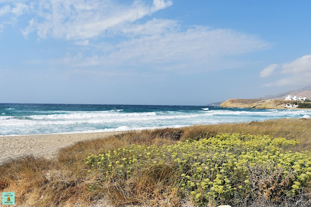 Ammitis Beach en Naxos