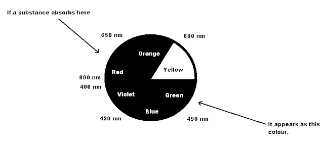 Why Do We See Color