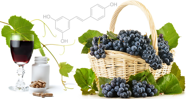 Resveratrol : Manfaat, Dosis & Efek Samping