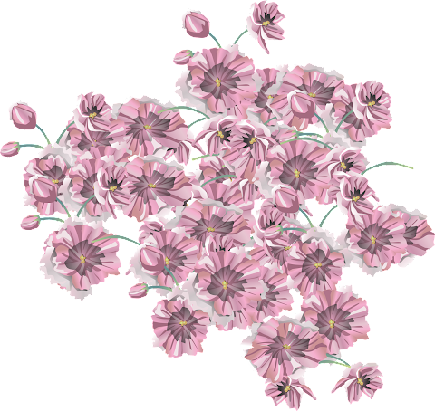 New Creation of Vector flower