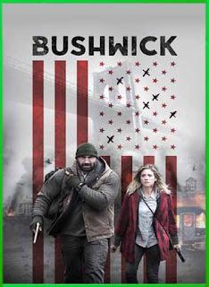 Bushwick (2017) | DVDRip Latino HD GDrive 1 Link