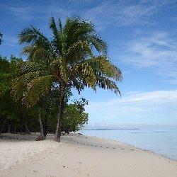 Perairan Laut Macam Macam Ekologi Pantai